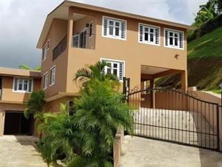 Single Family for sale in KM 1.3 CARR 802, Corozal, PR, 00783