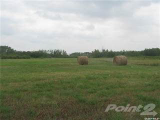 Farm And Agriculture for sale in 320 Acres RM of Wallace, Yorkton, Saskatchewan
