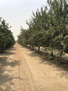 Farm And Agriculture for sale in 0 S Westlawn, Fresno, CA, 93706