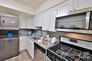 Apartment for rent in Columbia Pointe Apartment Homes - One Bedroom Medium, Columbia, MD, 21045