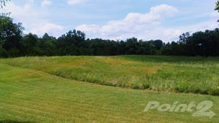 Residential Property for sale in 693 Walnut Grove School Road, Bonnieville, KY, 42713