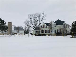 Single Family for sale in 15701 East 10500N Road, Grant Park, IL, 60940