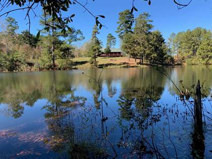 Residential Property for sale in No address available, Tylertown, MS, 39667