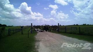 Farm And Agriculture for sale in 5009 CR 316, Caldwell, TX, 77836