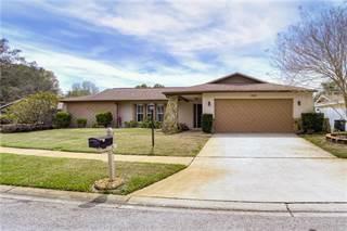 Single Family for sale in 9435 LAURA ANNE DRIVE, Seminole, FL, 33776