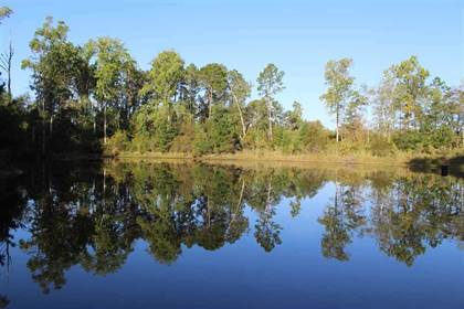 Lots And Land for sale in 00 James Troup, McRae - Helena, GA, 31037