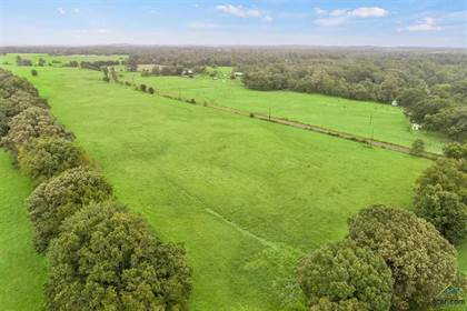 Farm And Agriculture for sale in 2112 CR 4778, Winnsboro, TX, 75494