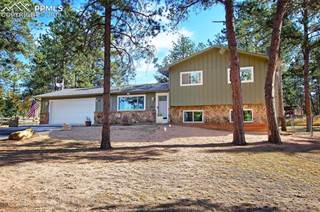 Single Family for sale in 575 Sunnywood Lane, Woodland Park, CO, 80863