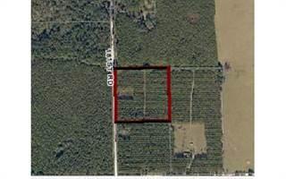 Land for sale in TBD 181ST ROAD, Live Oak, FL, 32060
