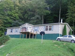 Single Family for sale in 166 Webb Branch, Lackey, KY, 41643