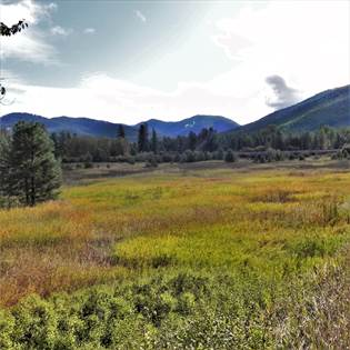 Lots And Land for sale in Nhn Mt Hwy 135, Saint Regis, MT, 59866