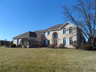 Single Family for sale in 17359 South McKenna Drive, Plainfield, IL, 60586