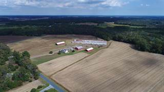 Farm And Agriculture for sale in 8121 Esham Rd, Parsonsburg, MD, 21849