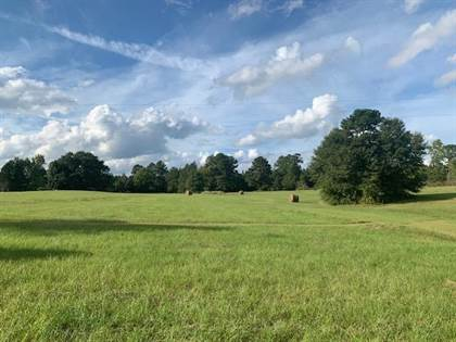 Lots And Land for sale in 5470 N Temple Rd., Bronson, TX, 75930