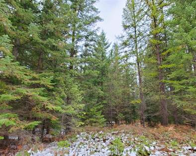 Lots And Land for sale in Nhn One Eye Lane, Heron, MT, 59844