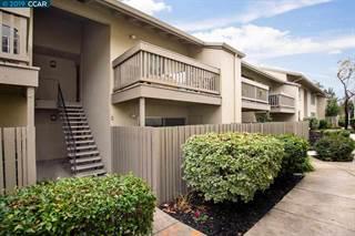 Condo for sale in 2562 Walnut Blvd 85, Walnut Creek, CA, 94596