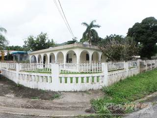 Residential Property for sale in CARR. 186 KM 22.9 COMUNIDAD DAVILA LOTE 111, Camuy Municipality, PR, 00627