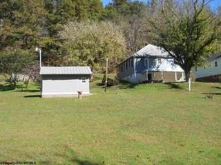 Single Family for sale in 2994 Wv 5 East  (Near Sand Fork) Highway, Glenville, WV, 26351