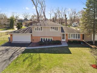Single Family for sale in 10211 Charles Avenue, Palos Hills, IL, 60465