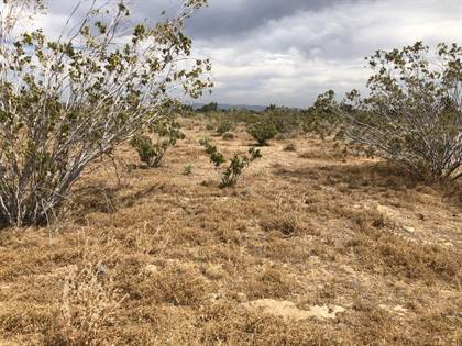 Lots And Land for sale in 12970 Schlitz Road, Phelan, CA, 92371
