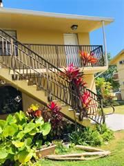 Condo for rent in 4444 Ludlam Rd 14, Miami, FL, 33155