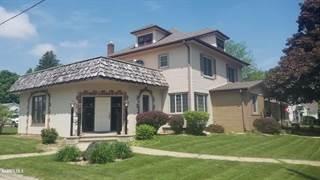 Single Family for sale in 318 S Ridge, Shannon, IL, 61078