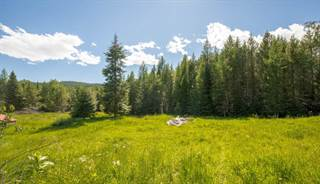 Single Family for sale in 30416 Three Turtle Crossing, Bigfork, MT, 59911