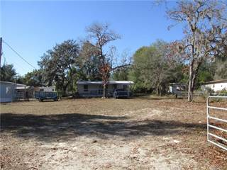 Residential Property for sale in 6816 N Birch Terrace, Hernando, FL, 34442