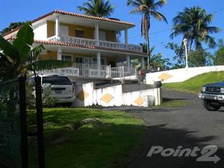Farm And Agriculture for sale in Guzmán Arriba Road 956 Km 9.58 Rio Grande, Rio Grande, PR, 00745