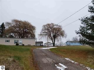 Single Family for sale in 2874 Dease Lake Road, Hale, MI, 48739