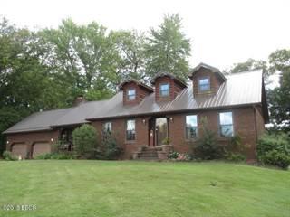 Single Family for sale in 2670 State Route 161, Centralia, IL, 62801