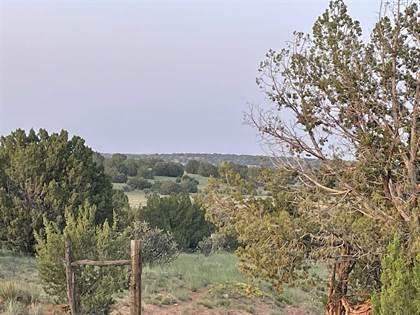 Lots And Land for sale in 44 Pintada Loop Road, Santa Rosa, NM, 88435