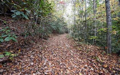 Lots And Land for sale in TBD MCLEAN RD, Andrews, NC, 28901