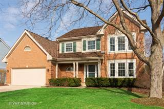 Single Family for sale in 230 W. Wellington Drive, Palatine, IL, 60067