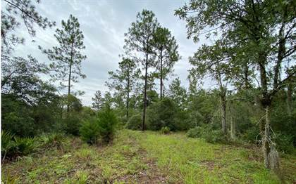 Lots And Land for sale in TBD SE 80TH PLACE, Trenton, FL, 32693