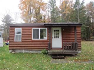 Single Family for sale in 11099 Aqua, Lake, MI, 48629