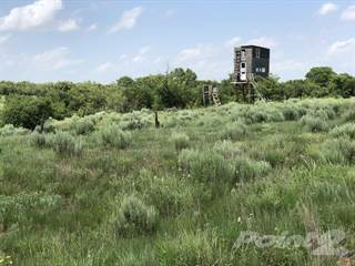 Farm And Agriculture for sale in County Road 180 and County Road SC, Wellington, TX, 79095