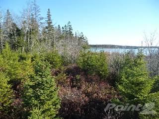 Land for sale in 20.34 acre lot- Chemin des Ben, Sluice Point, Yarmouth County, Nova Scotia