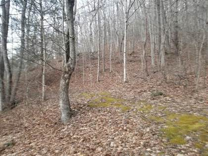 Lots And Land for sale in 00 St. Hwy 343, McRoberts, KY, 41835