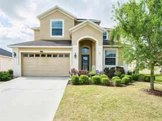 Single Family for sale in 34045 ALAMEDA DRIVE, Sorrento, FL, 32776