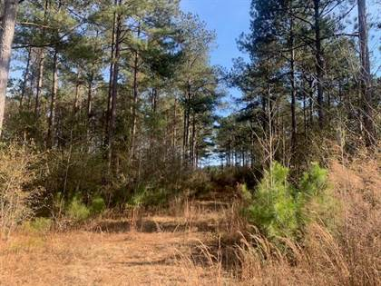 Lots And Land for sale in . Hwy 51 Carruth Ole Springs, Summit, MS, 39666