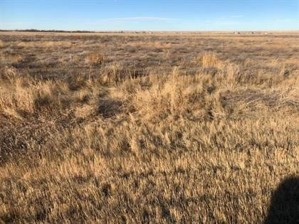 Lots And Land for sale in 13.65 Acres Highway 13 N, Wolf Point, MT, 59201