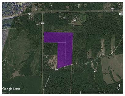 Lots And Land for sale in 00 FM 1669, Huntington, TX, 75949