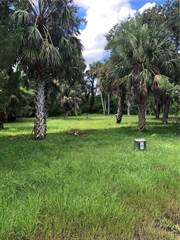 Land for sale in 5404 KOONS DRIVE, Port Richey, FL, 34668