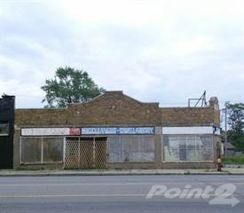 Comm/Ind for sale in 11824 W Grand River Ave, Detroit, MI, 48204