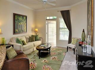 Apartment For Rent In The Bartram   Magnolia Large, Gainesville, FL, 32608
