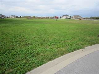 Land for sale in 25521 ROCK Drive, Plainfield, IL, 60586