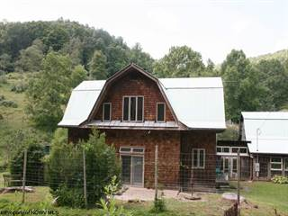 Single Family for sale in 1069 Snake Run Road, New Milton, WV, 26411