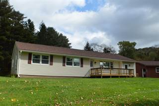 Single Family for sale in 14699 State Highway 28, Delhi, NY, 13753