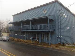 Multi-family Home for sale in 261 Main Street, Alto Pass, IL, 62905